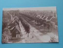 Panorama ERTVELDE ( REPRO Copie / Copy ) - Anno 19?? ( Zie Foto Voor Details ) !! - Evergem