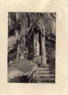 57525      Belgio,    Grotte  De Han-sur-Lesse  Et De  Rochefort,      NV - Rochefort