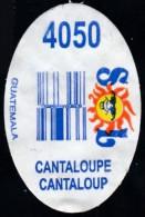 Fruits & Vegetables - Cantaloup, Produce Of Guatemala (FL4050-1) - Fruits & Vegetables