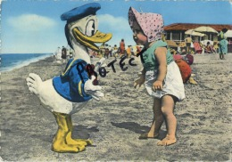Disney :  Incontro Con Paperinoi - Donald Duck ( Written Card With Stamp Cattolica Forli  1962 Format 15 X 10 Cm ) - Disney