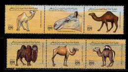 (cl.11 - P.29) Libye ** N° 1982 à 1987 (ref. Michel Au Dos) - Dromadaires, Chameaux  - - Libië