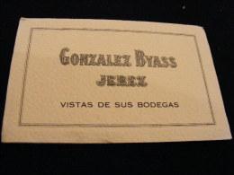 Carnet  Dépliant De 6 CP Espagne Jerez De La Frontera - Gonzales Byass -- Vistas De Sus Bodegas   NW15 - Espagne
