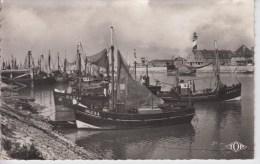 CPSM Grand-Fort-Philippe - Les Bateaux De Pêche - Frankreich