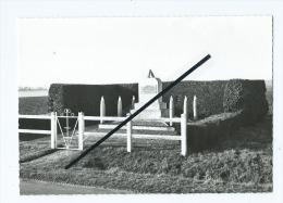 CPM  Abîmée  -  Fleuré  - Monument Au Maréchal Leclerc - France