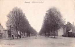 RENNES  -  L'Avenue  Du  Mail. - Rennes