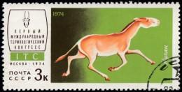 RUSSIA - Scott #4197 Equus Hemionus Kulan (*) / Used Stamp - 1923-1991 URSS