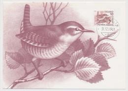 ISLANDE - 3 Cartes Maximum - Oiseaux - 1981 - Cartes-maximum
