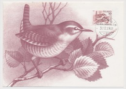 ISLANDE - 3 Cartes Maximum - Oiseaux - 1981 - Cartoline Maximum