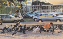 Brazil - Pigeons At Three Powers Plaza, Brasilia, China's Postcard - Brasilia