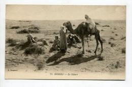 BISKRA - Le Desert - Biskra