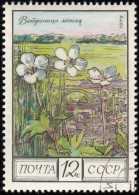 RUSSIA - Scott #4397 Anemone Silvestris / Used Stamp - 1923-1991 URSS