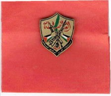 INSIGNE EPINGLETTE APRES 1980 FRONT DE LIBERATION DE LA PALESTINE POPULAR FRONT FOR THE LIBERATION OF PALESTINE - Organizations