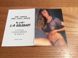 """Calendrier 1990 """"BAR GÉLÉBART LE-RELECQ-KERHUON (29) / JP Bourgeois (érotique, Nue)"""" (10x14cm) - Small : 1981-90"""