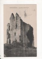 Peyrehorade Les Ruines D Aspremont - Non Classés