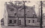 Brecht Museum Beschadigd Afgesneden Postzegel Gelopen Stempel - Brecht