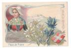 Chromo CHICOREE WILLIOT - Les Fleurs De France : Edelweiss Panicaut / Savoie - Tea & Coffee Manufacturers