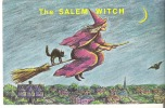 """The Salem Witch The Great Delusion"""" Which Started In Salem Village, Massachusetts - Andere"""