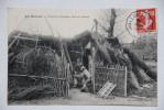 EN MORVAN-L'Ermite Coutelier, Dans Sa Cabane - France