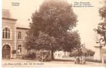 (D1 - 29 - ) Ferrières - Tribunal - Place Communale Arbre Du Centenaire Monument De La Guerre - Ferrieres