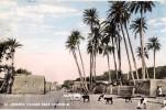 AK SUDAN KHARTOUM MOGREN VILLAGE NEAR KHATOUM   ANSICHTSKARTE 1961 - Sudán
