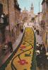 España--Barcelona--San Cugat Del Valles--Corpus--Tapetes De Flores--Iglesia - Flores