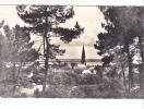 ARRADON (32)-56 -vue Eglise Golfe -2 Artaud Gaby - - Arradon