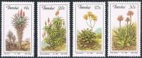 Transkei - Aloès En Fleurs 185/188 ** - Végétaux