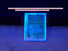 VARIÉTÉS 1997 N° 3100A N° 495 DOS ROUGE MARIANNE 14 JUILLET PHOSPHORESCENTES NEUF ** - Coil Stamps