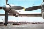 Mnt298 Airport Airplane Aircraft Avion Romania Tarom - 1946-....: Moderne
