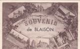 49 MAINE ET LOIRE   BLAISON GOHIER  Souvenir De Blaison Multi Vues - France