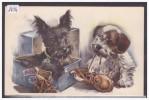 CHIEN - TB - Honden