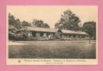 C.P. Alsemberg   :  Assistance Publique -  Sanatorium  G.  Brugmann :  Galerie De  Cure   (  Côté Est  ) - Beersel