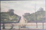 CPA Carte Postale Colorisée LA PANNE DE PANNE Sentier Des Dunes (C) - De Panne