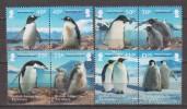 Antarctic.British Antarctic Territory.2013.Penquins.MNH.22271 - Brits Antarctisch Territorium  (BAT)