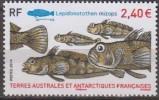Antarctic.T.A.A.F.2014.Fish.MNH.22276 - Zonder Classificatie