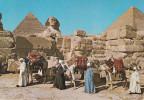 Egipto-Guiza--1986--The Great Sphinx And Keops Piramid--Camellos-----Giza-a, Flers De L'Orne, Francia - Guiza