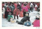 """Ecuador--1998--Comprando Un Cerdo """" Guacamote""""---a, Le Mans, Francia - Ecuador"""
