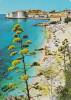 Croacia--Dubrovnik--Plaza-----a, Francia - Croacia
