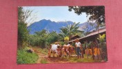 > Costa Rica   Mountain Farmer With Ox Cart   ==   2151 - Costa Rica