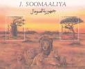 Somalia 1994 Lions Miniature Sheet MNH - Somalia (1960-...)