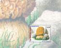 Tajikistan 1996 Mushrooms Miniature Sheet MNH - Tajikistan