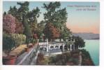 28838  ISOLA BELLA  (LAGO MAGGIORE)    PARTE DEL GIARDINO    ~ 1910 - Italie