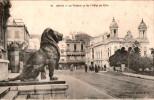 ALGERIE - ORAN - Le Théâtre Vu De L´Hôtel De Ville - Oran