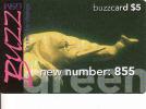 Tanzanie, Buzzcard, Green, Elephant,