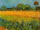 @@@ MAGNET - Vincent Van Gogh - View Of Arles With Irises - Advertising