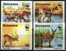 BOTSWANA WWF, Yvert 579/82 ** Neuf Sans Charniere. MNH - W.W.F.
