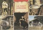La Forêt Landaise - Les Landes - Le Berger - Le Pot De Résine - Le Moulin à Eau - La Gaveuse D´oies - La Ferme - Neuve - Non Classés
