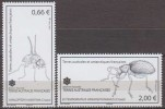 Antarctic.T.A.A.F.2015.Insects.MNH.22317 - Zonder Classificatie