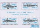 Antarctic.T.A.A.F.2014.Sheets.4v.Fish.MNH.22331 - Zonder Classificatie