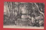 Bains Les Bains --  Le Ruisseau Du Parc - Bains Les Bains